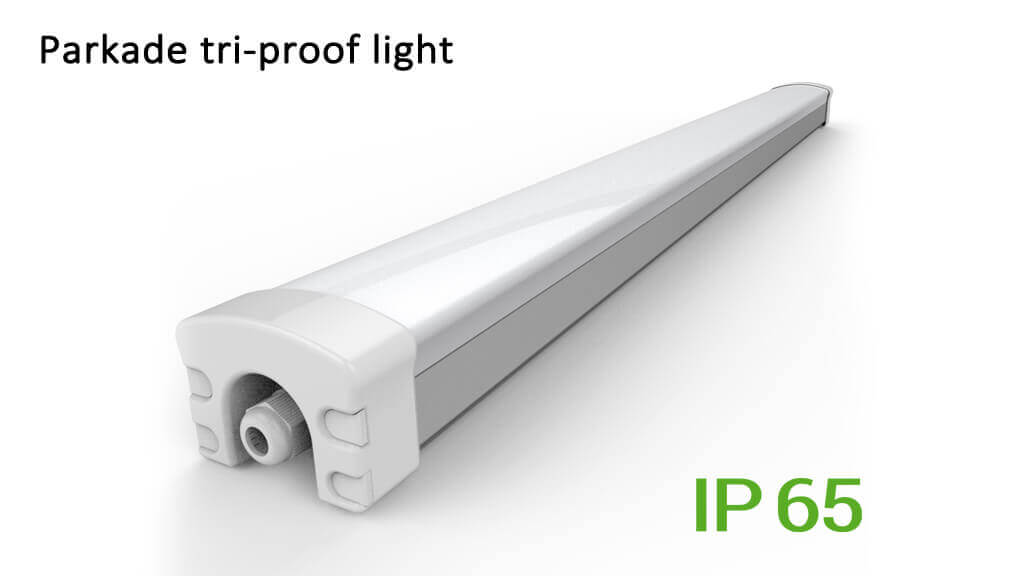 LED triproof light