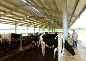 Rancher livestock