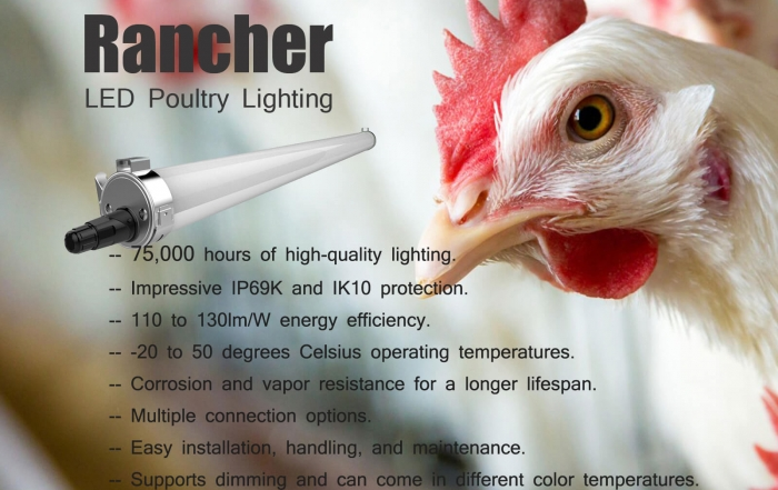 Rancher Poultry Lighting
