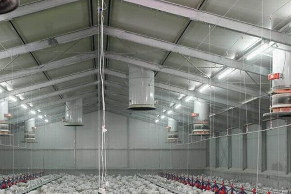 Rancher-for-poultry-house-chicken-farm